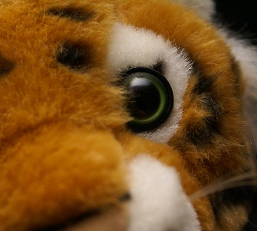 eye tiger stuffedanimal