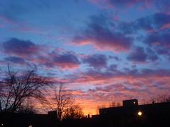 "SLU Sunset • <a style=""font-size:0.8em;"" href=""http://www.flickr.com/photos/45335565@N00/2196793540/"" target=""_blank"">View on Flickr</a>"