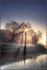 Sunshine through trees (Erroba) Tags: trees sky sun ice water sunshine photoshop canon river frozen belgium antwerp erlend hdr mechelen postprocessing zenne tophdr 400d treesubject thesecretlifeoftrees erroba realistichdrcontestwinner robaye erlendrobaye wonderworldgallery