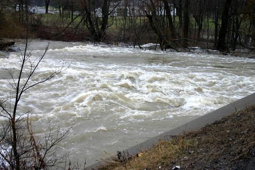 Swirling Rapids