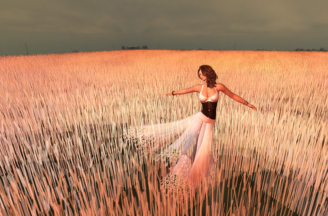 Twirling in the Wheatfield