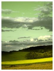 Paysage vert / Green landscape (Jerome Mercier) Tags: leica light france color green landscape photography spirit vert lumiere paysage couleur rone meyzieu leicadigilux3 digilux3 anawesomeshot aplusphoto jeromemercier jeromemercierphoto jmbook bookjm