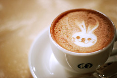 I luv cappuccino + rabbit (k-ko) Tags: rabbit art coffee canon 50mm cafe kobe cappuccino
