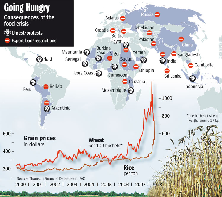 global food security what is the issue