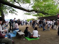 Millions of tourists on the summit of Mt Takao