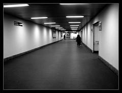 passante... per cosa? (: panti :) Tags: urban bw persona blackwhite neon milano tunnel bn persone luci treno biancoenero treni cubism ferrovie passante passanteferroviario pareti entrate cronacheurbane