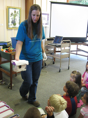 The Bat Lady gently shows a small bat to awestruck children at the Woodside Library