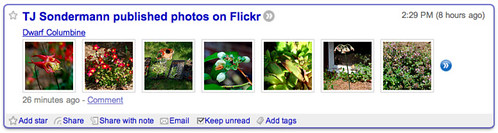Flickr entry in FriendFeed via Google Reader (1 of 3)