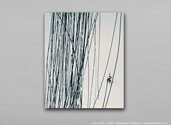 Lines & Life Series (Contemporary Art New York | Alexandre Guillaume) Tags: nyc usa ny newyork paris art architecture painting french photography grey gris design us photo photographie interior interieur fair exhibit exhibition moderne peinture canvas architect exposition francais toile architecte minimaliste bichromie contemporaine abstraite