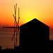 Windmill at sunset (Oia, Santorini) by marcelgermain
