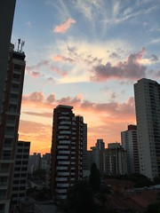 Our nature. (Elias Rovielo) Tags: sunset sãopaulo ruaoscarfreire poente pink purple l