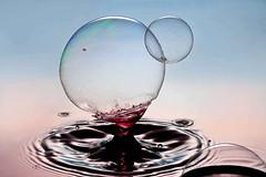 Bubble Catcher (*Corrie*) Tags: drops waterdrop bubble splash waterdrops highspeed watersplash waterdroplet watersculpture liquidart thetimemachine canonef100mmf28macrousm liquidmacro canoneos50d macroart waterdropphotography speedlite580exll speedlite430exll watercollision dripkit corriewhite liquiddropart