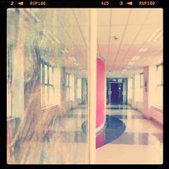 instagramapp square squareformat iphoneography... (Photo: brendan ó sé on Flickr)