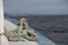 Rope (Kelly Bumford) Tags: ocean camera blue water digital canon photography eos boat photo focus rope photograph 7d