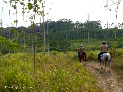Horseback Riding at Chaa Creek, Belize