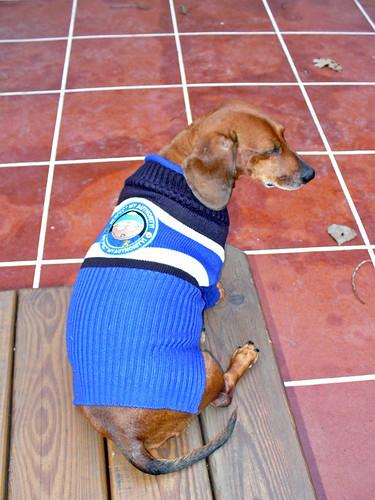 2007-10-18 - Ralphie the Police Dog - 0034