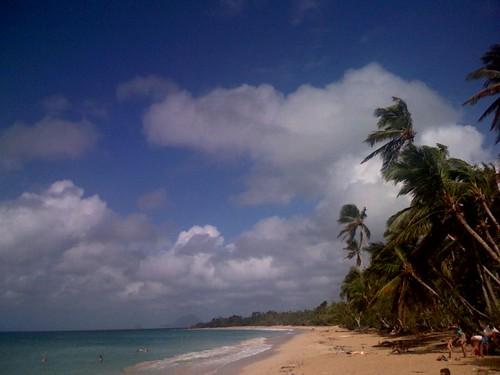 Martinique : plage des Salines