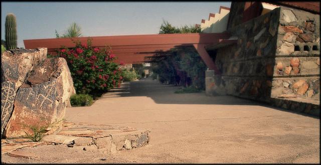Taliesin West, Petroglyphs and Cactus