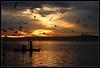 (tcc20012) Tags: sunset españa naturaleza sun luz valencia contraluz spain nikon contest paisaje cielo nubes anochecer albufera fpc eow d80 35faves nikond80 diamondclassphotographer megashot theunforgettablepictures tcc20012 imagicland —obramaestra—