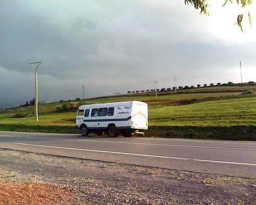Bus Reggada