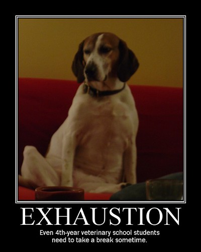 Motivational Poster - Exhaustion, demotivational posters, funny motivational posters