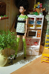 Riku Is Going to the Library (Girl Least Likely To) Tags: green kitchen fashion toys japanese dolls vinyl brunette rement curlyhair mattel riku sekiguchi momoko asiandolls everydaybgirl