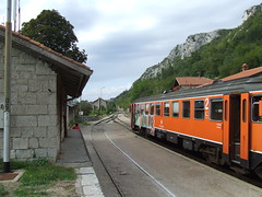 Divaca Train