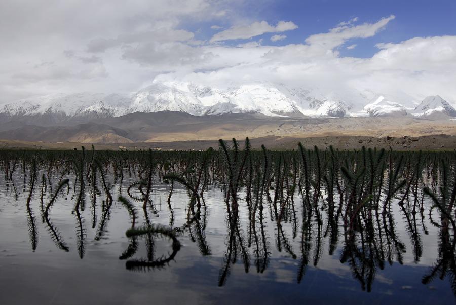 帕米爾-卡拉庫里湖