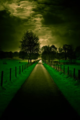 Walking with a friend in the dark is better than walking alone in the light (Gordon Mould)