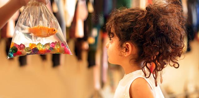 احدث صور فنان سليمان الباتل 2013 - صور اطفال كيوت عربيه 2013 3540430376_20ccfedf08_z.jpg?zz=1