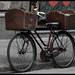 Bicicle Race