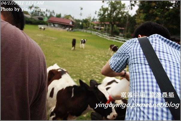 嘉義中埔_綠盈農場20110417_I6929