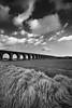 Go West (Chee Seong) Tags: westlothian scotland uk field spring cloud sky landscape straw farm railway track mono blackandwhite contrast wide canon 5dm2 canon1740mm lee sgnd