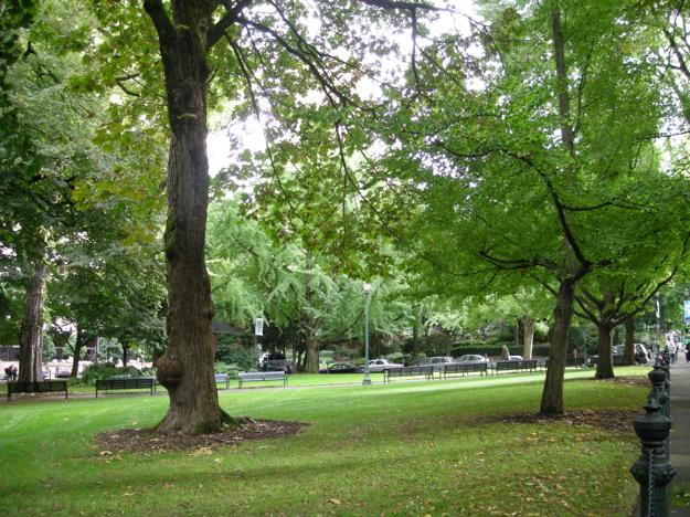 park_oct07_green