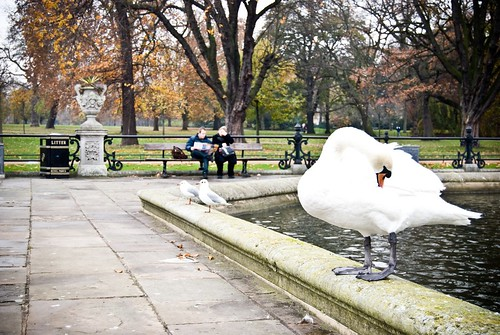 Hyde Park, Italian Gardens