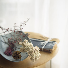 still life #23 (Ta) Tags: 6x6 rose square kodak hasselblad 500c catalogue portra f28 planar 80mm 400vc riceflower fivestarsgallery