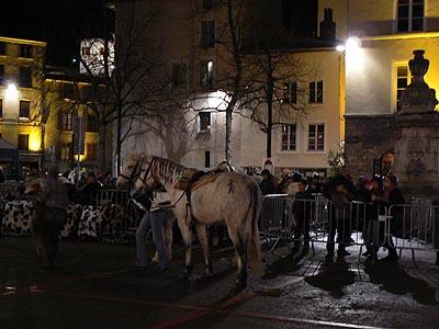 chevaux à Vienne.jpg