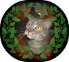 holly wreath boo