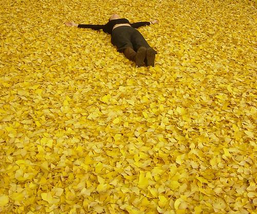 Lying in leaves