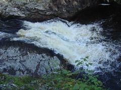 Falls of shin (gmj49) Tags: water scottish falls highland shin appenninosettentrionalealpinatura gmj49