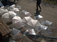 (xxxkariyanxxx) Tags: light shadow sun white rain umbrella walk clear shade