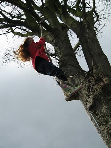 Carmen boven in de boom