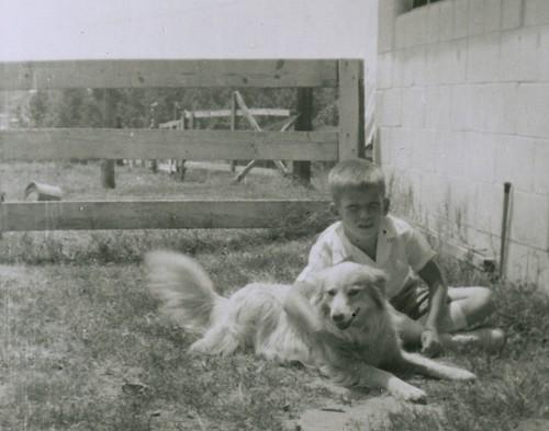 Blondie and her boy, 1953