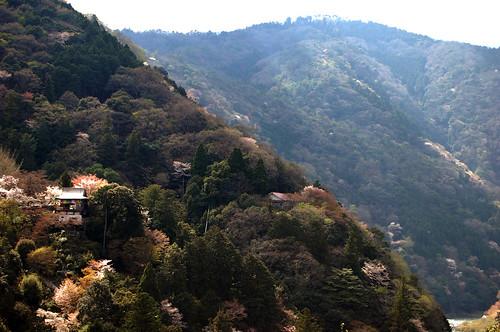 Magnifique vue depuis les jardins de la villa Okochi Sanso