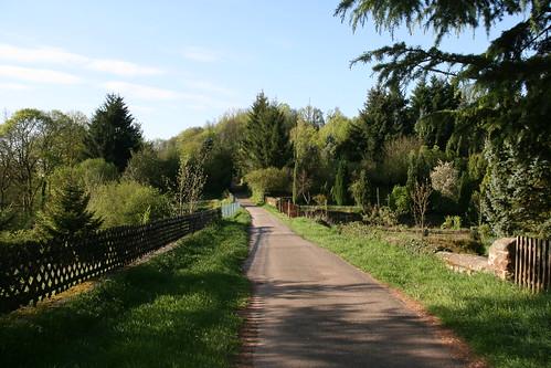 Trail near La Petite Pierre