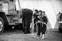 Les enfants du cirque (johann walter bantz) Tags: bnw storytelling documentary documentaire 85mm childs children enfants portrait nikond4 blackwhite normandy manège circus cirque