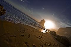 apostles6 (picsie14) Tags: sunset sea panorama beach landscape australia wideangle victoria greatoceanroad twelveapostles tilting ultrawideangle 14mm nikond700