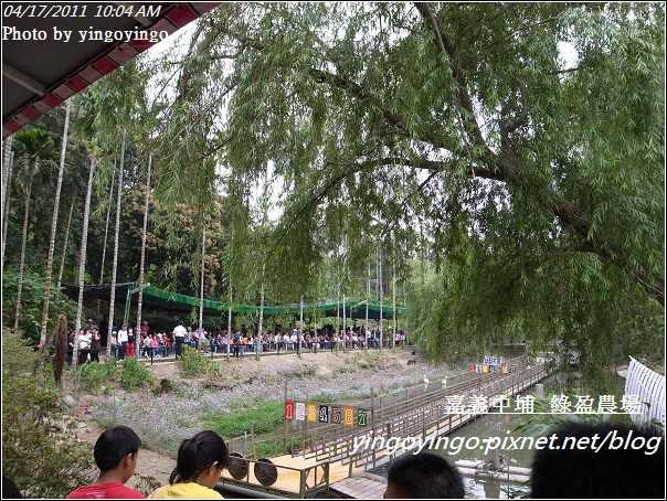 嘉義中埔_綠盈農場20110417_R0019002