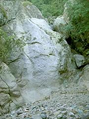 Dalle blanche de la Cavicchia