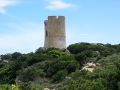 Arrivée à la tour d'Ulmetu